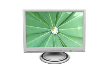 LCD Flat Screen Monitor Green Palm Leaf