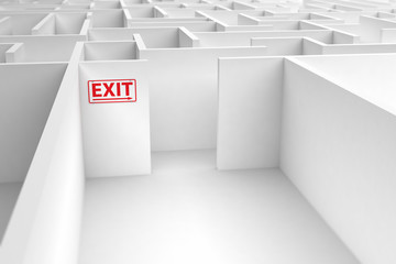 Exit strategy concept showing the direction onto a maze