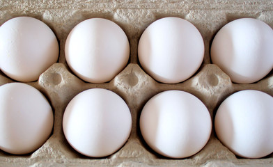 Organic Eggs - nutritious and delicious