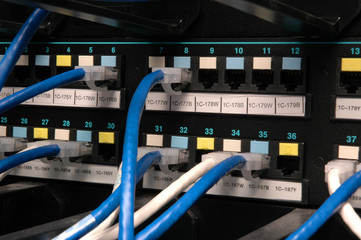 Data transmission cables in a patch bay
