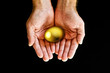 Holding golden egg