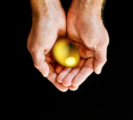 Gold egg in hands