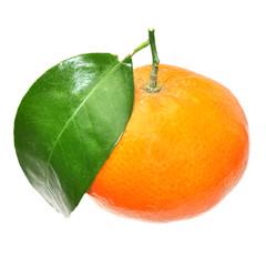 Frische Fruchte. Clementine. Isoliert