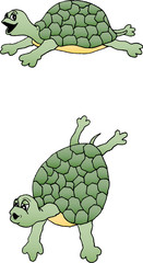 Illustration of a really cute turtle