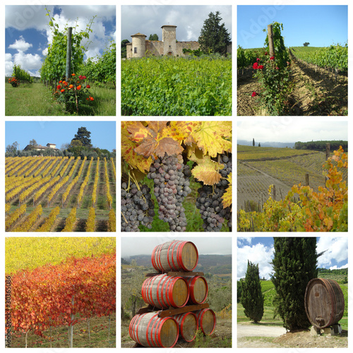 wine agriculture collage, Chianti in Tuscany, Italy