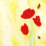 Papaveri sul beige - Poppies on beige