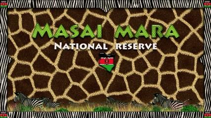 Masai Mara: giraffe skin