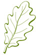 Leaf of oak tree 3, pictogram