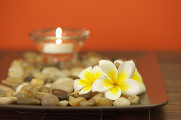 Spa flowers and candle