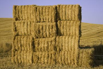 Balas cuadradas de paja apiladas en el campo