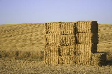 Balas de paja apiladas en el campo