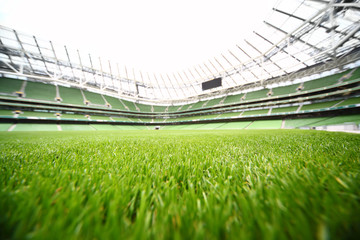 green-cut grass in large stadium at summer day