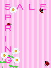 Spring Sale Sign with Daisies Flowers and Ladybugs
