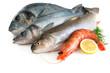 Sea food - 30402894