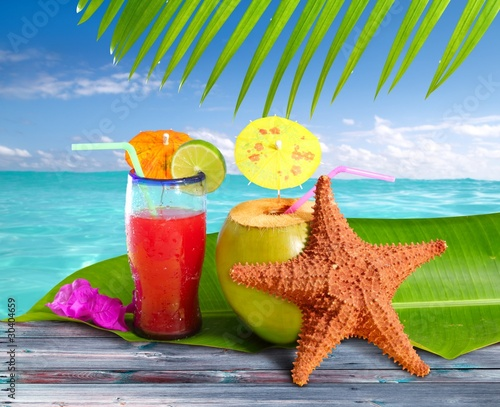 coconuts cocktails straw tropical beach starfish