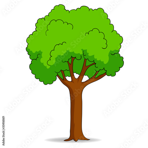 Cartoon tree isolated on white background