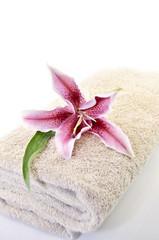 towels spa