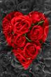 herz,rosen