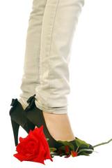 Rosa rossa e scarpe nere