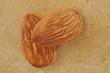 closeup almond