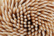toothpicks background