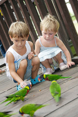 two children feeding parrots in park