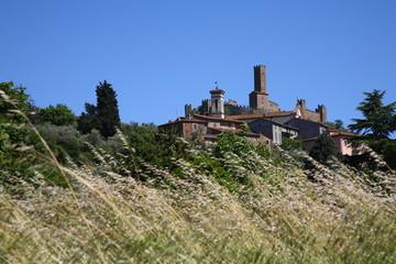 Montecchio Vespone, castello