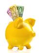 Sparschwein mit Geldscheine