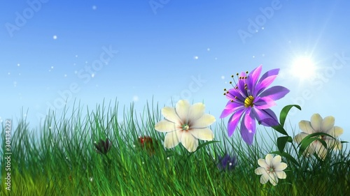 flying ladybird with growing flowers and grass
