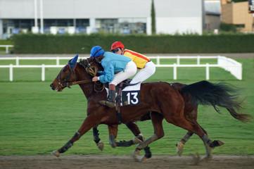 chevaux de course en action