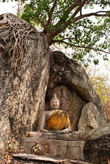 Image of Buddha under the tree.