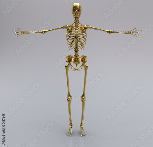 Human gold skeleton
