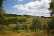 Vistarenni; Siena