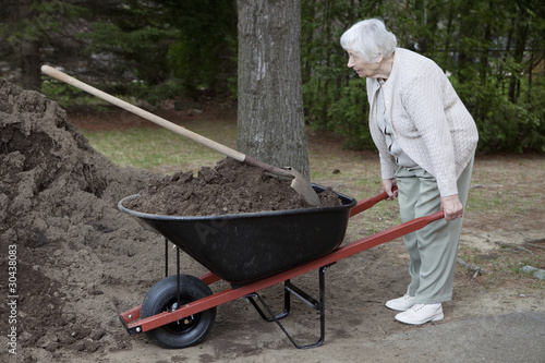 Senior woman carrying dirt in a wheelbarrow