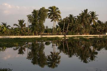 Views on Kerela Backwaters
