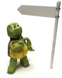 Tortoise with a signpost