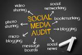 Social Media Audit poster