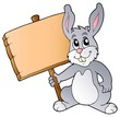 Cute bunny holding wooden board