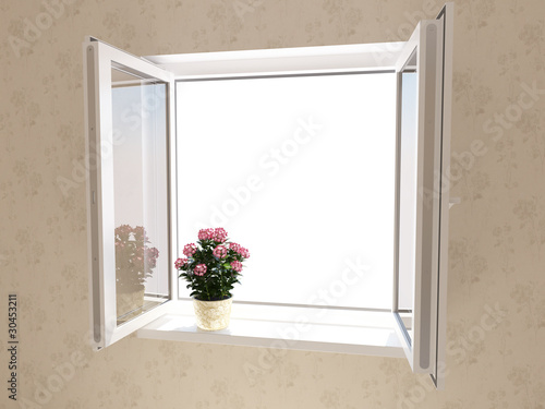 Opened plastic window