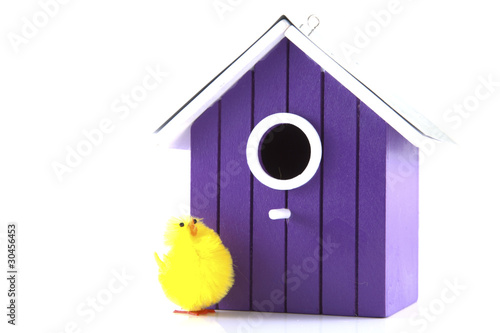 Bird house with bird