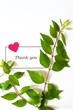 メッセージカードと葉とハート