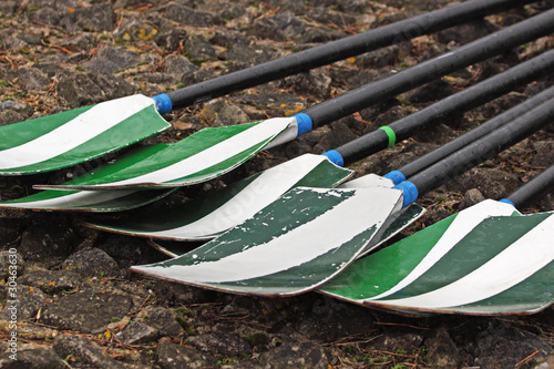 Oars laid out on a quay