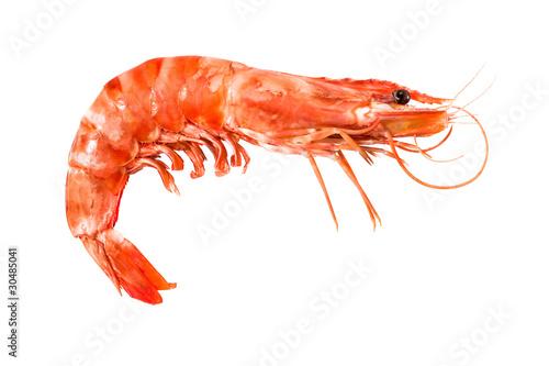 tiger shrimp isolated on white - 30485041