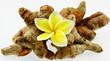 rhizome de curcuma longa, safran pays, île de la Réunion