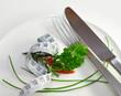 Diät,Symbol