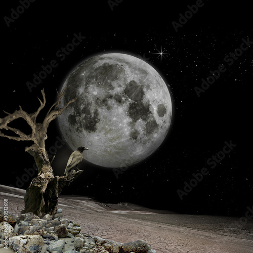 .moon vision- mystic background for your desktop