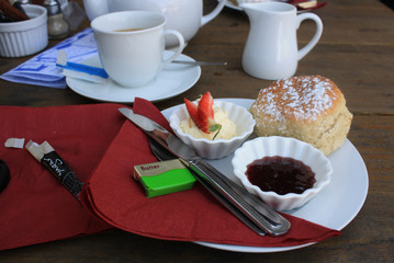 Tea and Scone with Clotted Cream