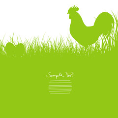 Rooster Standing In The Meadow & Eggs Background Green