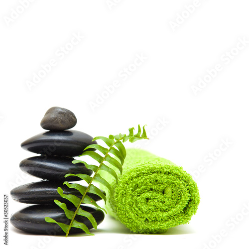 Zen concept with green leaves - alternative medicine and treatme