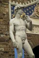 david michelangelo firenze
